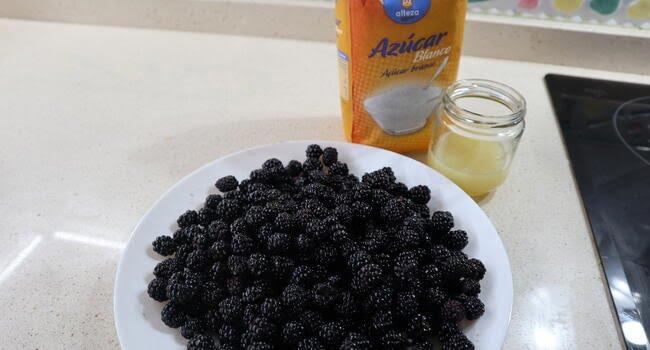 Los ingredientes necesarios para hacer mermelada de mora en Thermomix