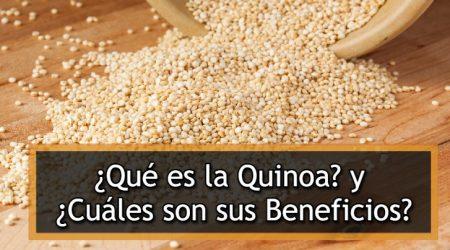 Los mejores consejos y beneficios de la quinoa