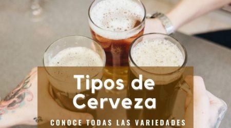 Distintos tipos de cerveza en un vaso